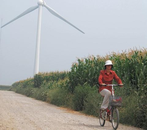A resident bikes through the corn fields surrounding the Guanting Wind farm, 90 kilometers outside Beijing.